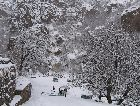 Армения: Горы зимой