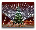 Белоруссия: Новогодний Минск