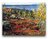 Финляндия: Осень в Вуокатти