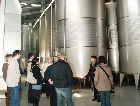 Молдавия: Винный завод Шато Иартель