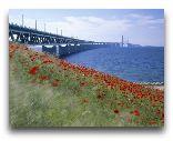 Швеция: Мост, соединяющий Мальме и Копенгаген