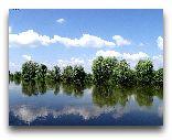 Украина: Река Стырь в Кузнецовске. Лето.