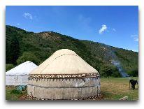 юртовый лагерь Юртовый лагерь Семь Быков