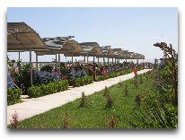 отель AF Hotel Aqua Park: Летний ресторан