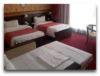 отель Alp Inn Hotel: Стандартный семейный номер