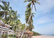 отель Amaryliis Resort: Пляж