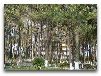 отель Andamati: Территория