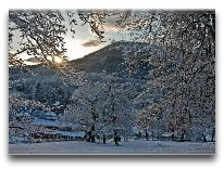 отель Apollon: Зима