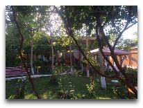 отель Asia Bukhara: Территория