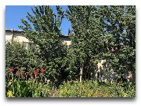отель Asia Khiva: Территория отеля