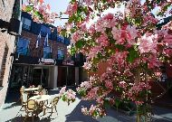 отель Bern: Внутренний дворик летом