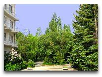 отель Blue Sevan: Территория отеля