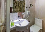 отель Borjomi Palace: Ванная комната