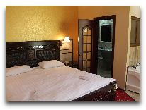 отель Borjomi Palace: Номер Executive