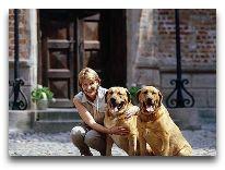 отель Broholm Slot: Брохольмер - порода датских собак