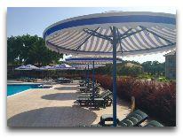 отель Caspian Sea Resort: Территория отеля