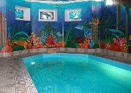 отель Кошкин дом: Бассейн