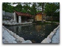 отель Chateau Chikovani: Пруд