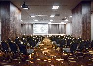 отель Codru: Конференц зал Courtyard