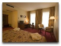 отель Conti: Номер business