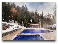 отель Crowne Plaza Borjomi: Бассейн