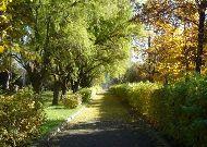 санаторий Днестр: Парковая зона