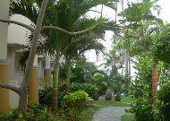 отель Dynasty Mui Ne Beach Resort: Территория отеля