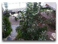 отель Egle+: Зимний сад