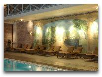 отель Excelsior Baku: Бассейн