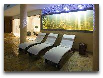 отель Grand Rose SPA: Аквариум у бассейна