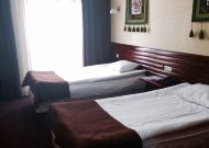 отель Green City Bishkek: Номер стандарт Twin