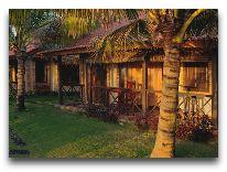 отель Green Papaya Organic Village: Территория отеля