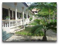отель : Сад отеля