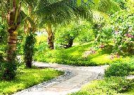 отель Hoang Ngoc Beach Resort: Территория отеля