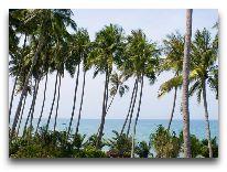 отель Hoang Ngoc Beach Resort: Вид на море