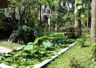 отель Hoi An Garden Villas Hotel: Сад в отеле