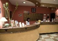 отель Hrazdan Hotel: Ресепшен