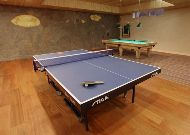 отель IDW Esperanza Resort: Настольный теннис