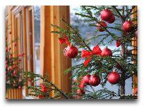 отель IDW Esperanza Resort: Новогодняя елка