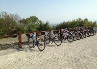 отель Kvareli Lake Resort: Велосипеды на прокат