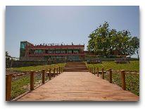 отель Kvareli Lake Resort: Вид из окна отеля
