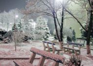 санаторий Нуфэрул Алб: Территория зимой