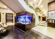 санаторий Olymp II: Лобби отеля