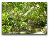 отель Palmira Resort: Территория отеля