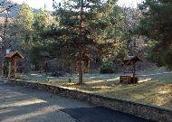 отель Park Resort Aghveran: Парк