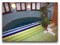 отель Po Kastonu: бассейн в сауне