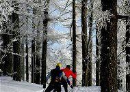 отель Puhajarve: Лыжи