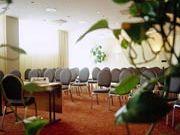 отель Radisson BLU Royal: Конференц-зал