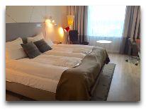 отель Radisson Blu Sky Hotel: Номер Business Class