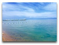 отель Радуга: Пляж отеля
